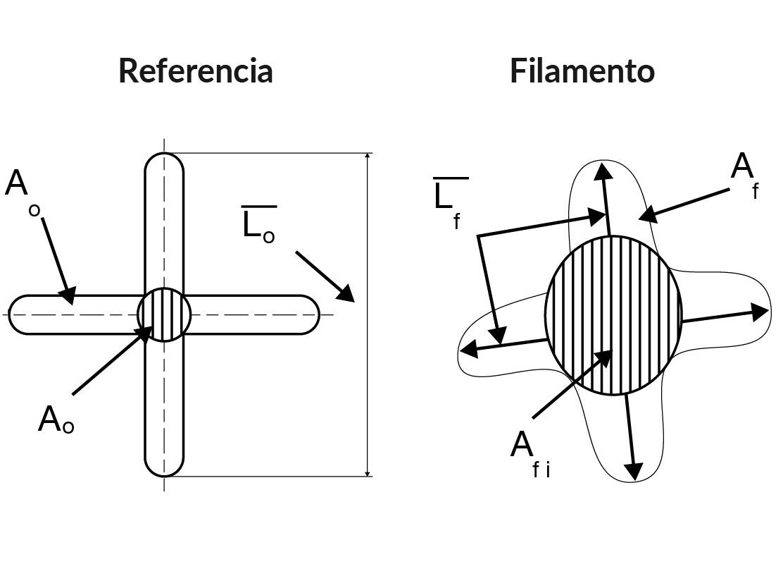 Fig. 1: Medidas que definen la sección transversal de la fibra referencia (izquierda) y el filamento (derecha)