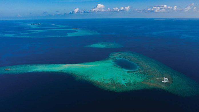 Los océanos están inundados de plástico