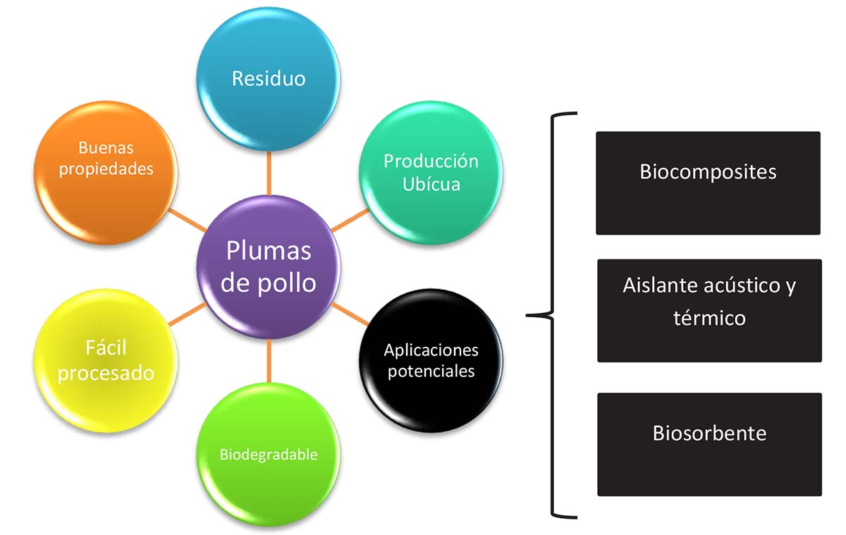 Figura 1. Beneficios del aprovechamiento de plumas y aplicaciones potenciales