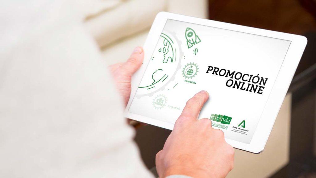 Programa de Marca - promo online WEBINARIOS