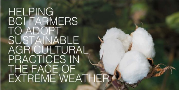 Tendam se adhiere a Better Cotton Initiative